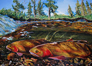 Cutthroat Trout Originals - Cutthroat in the Ripples by Les Herman