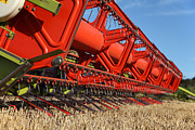 Paul Lilley - Cutting Deck And Header