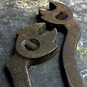 Cutting Pliers Print by Bernard Jaubert