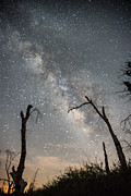 Star Gazing Photos - Cuyamaca Stars Seven by Josh Whalen