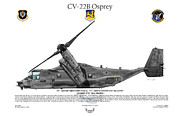Air Wing Graphics Prints - CV-22B Osprey 71st SOS Print by Arthur Eggers