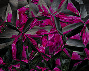 Gary Rieks - Cyclamen in Abstract