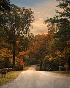 Autumn Scene Photos - Cycling Season by Jai Johnson