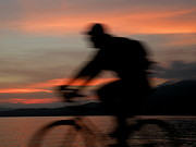 Male Framed Prints Photos - Cyclist in Motion by Brian Chase