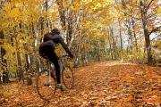 Colors Of Autumn Framed Prints - Cyclist Riding In Autumn On Humber Framed Print by Peter Mintz