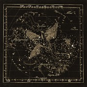 Cygnus Constellations, 1829 Print by Science Photo Library