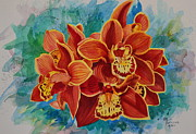 Evelyn  Mendez - Cymbidium Electric...