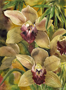 Alfred Ng - Cymbidium Orchid With...