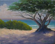 Candace Doub - Cypress and Turquoise