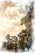 Barry Jones - Cypress Heaven