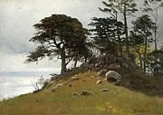Famous Artists - Cypress Point Monterey by Albert Bierstadt
