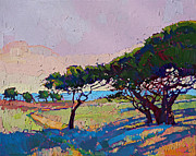 Erin Hanson - Cypress Shadow