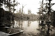 Cypress Trees Framed Prints - Cypress Swamp Framed Print by Scott Pellegrin