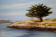 Landscapes Drawings Metal Prints - Cypress Tree at Marina Park #2 Metal Print by Tina Obrien