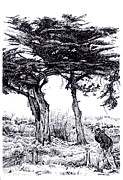 Pointillist Originals - Cypress Trees and a Sneeze by Joseph Juvenal