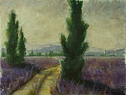 Europe Pastels - Cypress Trees and Lavender Field by Logan Marlatt Gerlock