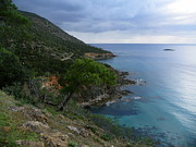 Noreen Hacohen Art - Cyprus Coastline by Noreen HaCohen