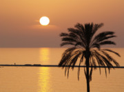 Cyprus Sunset Print by Alex Cassels