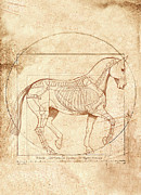 Catherine Digital Art Prints - da Vinci Horse in Piaffe Print by Catherine Twomey