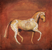 Dressage Horse Originals - Da Vinci Horse Piaffe Original Oil by Catherine Twomey