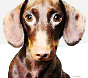 Brown Dog Framed Prints - Dachshund Art - Roxie Doxie Framed Print by Sharon Cummings