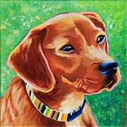 Rust Paintings - Dachshund Beagle Mixed Breed Dog Portrait by Robyn Saunders
