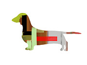 Colorful Art. Prints - Dachshund Print by Irina  March