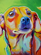 Chihuahua Colorful Art Prints - Dachshund Mix - Little Dog Print by Alicia VanNoy Call