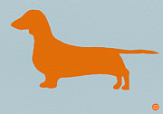 Cute Mixed Media Metal Prints - Dachshund Orange Metal Print by Irina  March