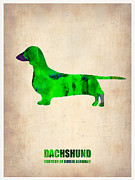 Dachshund Puppy Digital Art Framed Prints - Dachshund Poster 1 Framed Print by Irina  March