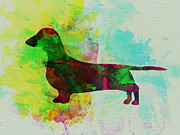 Pet Dog Framed Prints - Dachshund Watercolor Framed Print by Irina  March