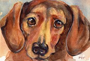 Dachshund Art Paintings - Dachshund watercolor by Marias Watercolor