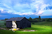 Randall Branham Art - Dads Favorite Bird Meadowlark by Randall Branham