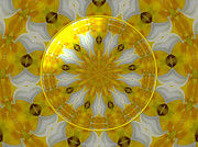 Daffodils Photographs Posters - Daffodil and Easter Lily Kaleidoscope Under Glass Poster by Rose Santuci-Sofranko