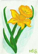 Picture Painting Originals - Daffodil Dance by Faye Giblin