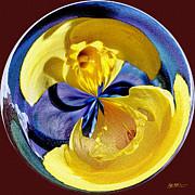 Jeff McJunkin - Daffodil Orb
