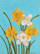 Anastasiya Malakhova - Daffodils