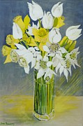Glass Flowers Prints - Daffodils and white tulips in an octagonal glass vase Print by Joan Thewsey