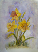 Daffodils Originals - Daffodils by Donna Walsh