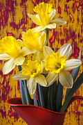 Yellows Prints - Daffodils In Orange Pitcher Print by Garry Gay