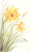 Birthday Present Paintings - Daffodils by Sara Davenport