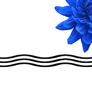 Bathroom Wall Art Posters - Dahlia Flower and Wavy Lines Triptych Canvas 3 - Blue Poster by Natalie Kinnear