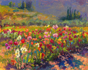 Oil Painter Posters - Dahlia Row Poster by Talya Johnson