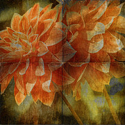 Tangerine Prints - Dahlias Print by Bonnie Bruno