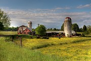 Barns Photos - Dairy Land  by Benanne Stiens