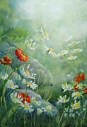 Alexandra Krasuska - Daisies and poppies...