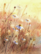 Sunlight Mixed Media Metal Prints - Daisies At Sunset - Impressionism Metal Print by Zeana Romanovna