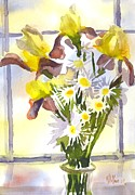 Water Colours Framed Prints - Daisies with Yellow Irises Framed Print by Kip DeVore