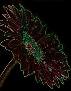 Neon Art - Daisy Ablaze by Renee Gardner