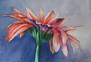 Donna Pierce-clark Art - Daisy Daisy by Donna Pierce-Clark
